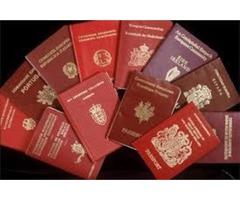 adquirir licencia de conducir Visa, pasaporte, tarjeta de identificación