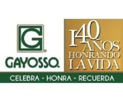 GRUPO GAYOSSO TE ESTA BUSCANDO EJECUTIVO DE PREVISION