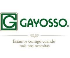 Representante De Ventas Gayosso - Excelnetes Ingresos. Capacitacion Pagada