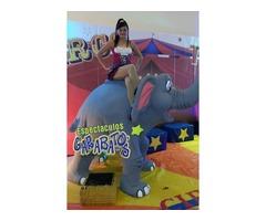 atracciones infantiles circo y diversion