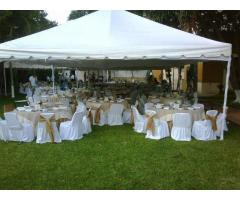 Banquetes, Taquizas y Carpas Elegantes