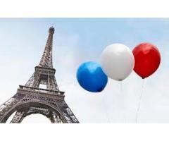FRANCES-cursos PROFESIONALES