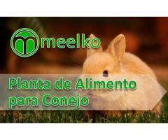 Planta meelko  para procesar Alimento de Conejo
