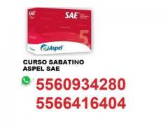 CURSO ASPEL SAE CURSO BÁSICO 7.0  $150