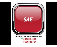 CURSO ASPEL SAE  ALMACENES 7.0 $150