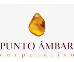 PROMOCIONES PUNTO AMBAR