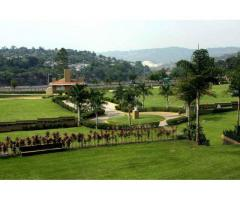 Cipreses Gayosso fosa cuádruple servicios completos Jardín Sauces GG