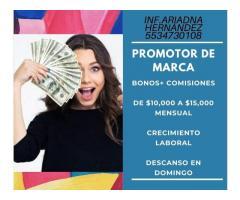 CALL CENTER Y CAMPO INGRESOS SEMANALES DESDE $4,000
