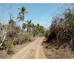 Venta de Terrenos Corredor Turistico San Marcos Guerrero