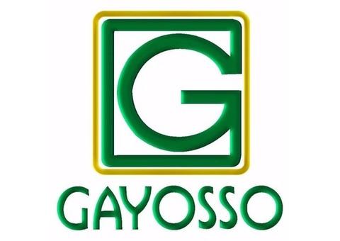 VENDEDOR GAYOSSO