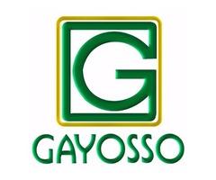 Vendedor GAYOSSO- Contratación inmediata