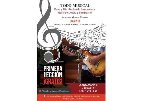 Mantenimiento integral para pianos de concierto cel 4424056968