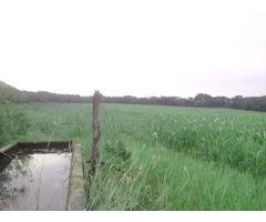 Terreno de 7.58 hectáreas con agua.